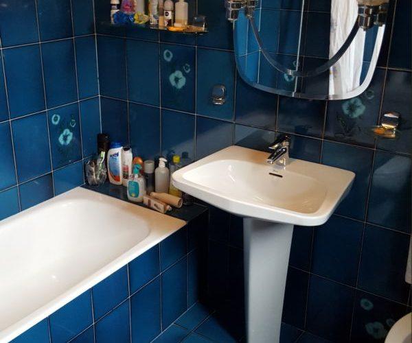 Campiña Saindua baño exterior